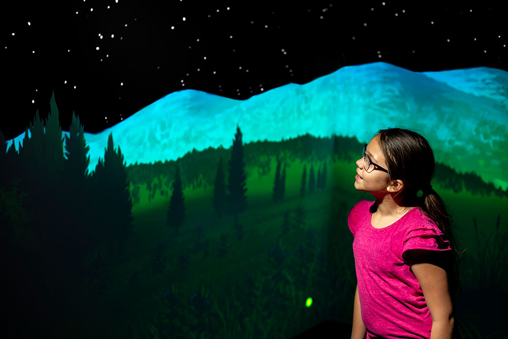 Girl in night panorama with mountain, trees, and stars.